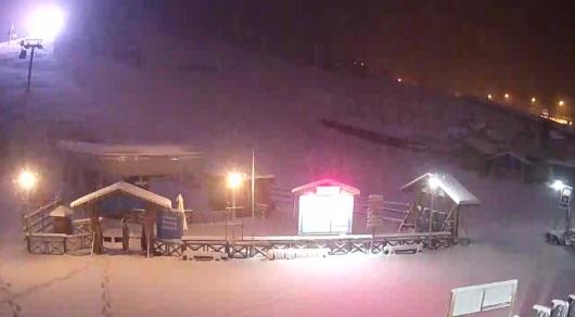 В Алматы пошел обильный снегопад