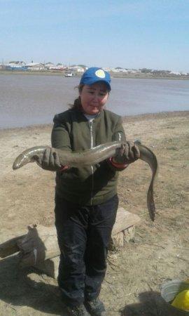 Кто приплыл: в Атырау поймали диковинную рыбу