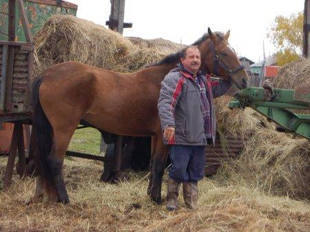 Камчатский депутат решил ездить на сессии верхом и требует парковку для его коня