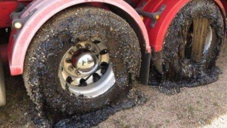 Дороги расплавились из-за аномальной жары в Австралии