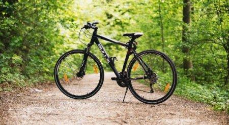 Нужно ли иметь с собой документы на велосипед