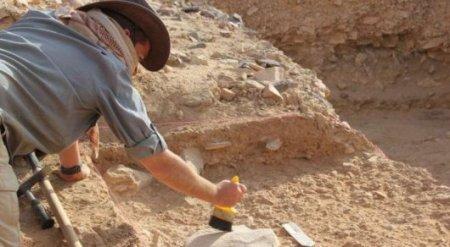 Первые люди вымерли из-за лени - ученые