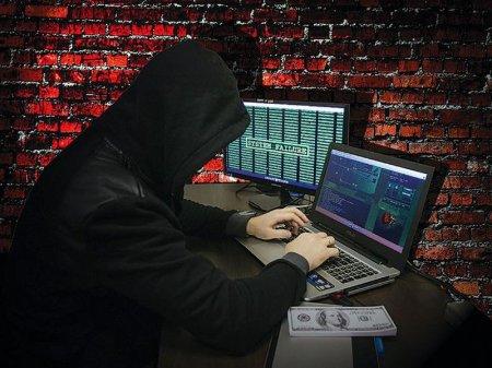 "Мошенники продавали в Интернете ""пустышку"" за 335 евро"