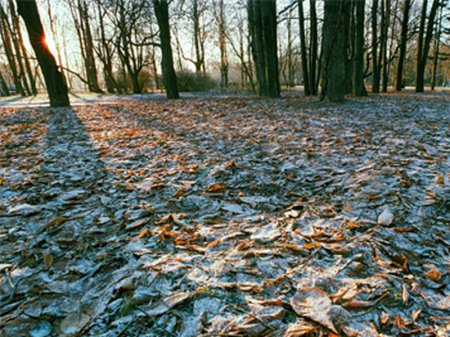 Снег и заморозки ожидаются в семи регионах Казахстана
