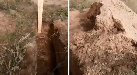 Осы покусали: могилу оставили незакопанной под Павлодаром