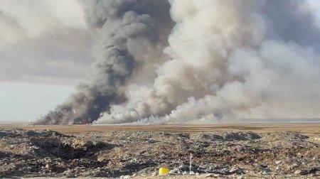Причиной горения трех гектаров камыша в Мангистау стал поджог