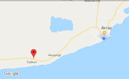 Видео: Столкновение автомобиля с лошадью произошло в пригороде Актау