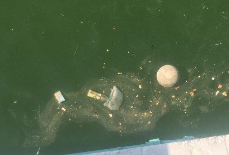 Металлическое ограждение установили для защиты от мусора посетителей скальной тропы в Актау