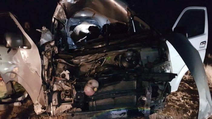 При столкновении автомобиля с верблюдом на трассе Актау - Жетыбай погиб человек