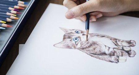 Не фанат искусства: кошка реставратора испортила полотно за 2,5 миллиона тенге
