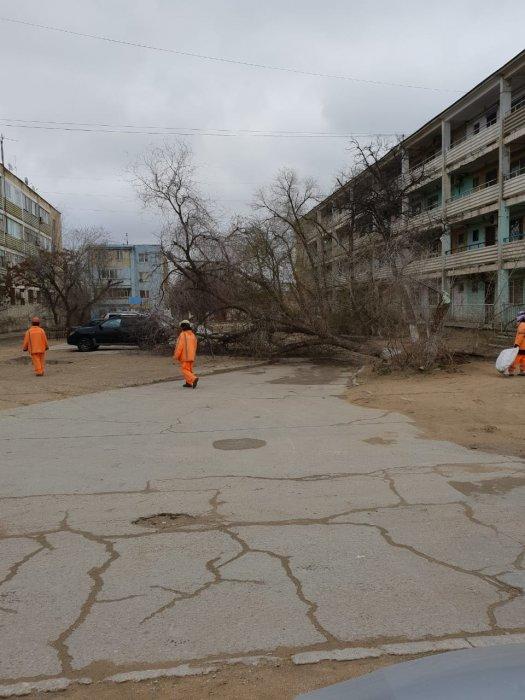 Последствия непогоды в Мангистау:  упавшие деревья и  сорванные крыши