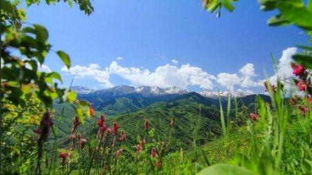 Какая погода ожидается этим летом в Казахстане