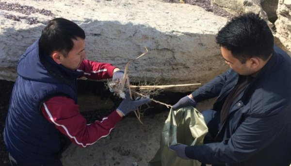 За два часа чиновники собрали 30 тонн мусора в Актау