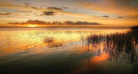 Озеро неожиданно образовалось на западе Казахстана