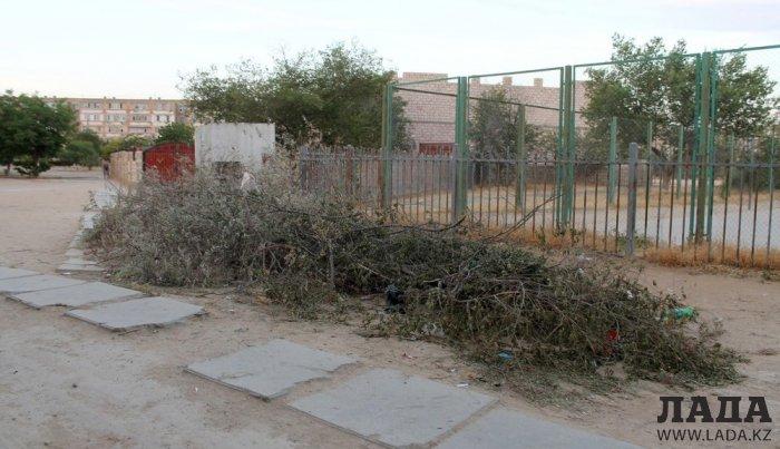 Полив по факту: Исполнение графика полива в Актау 12 июня