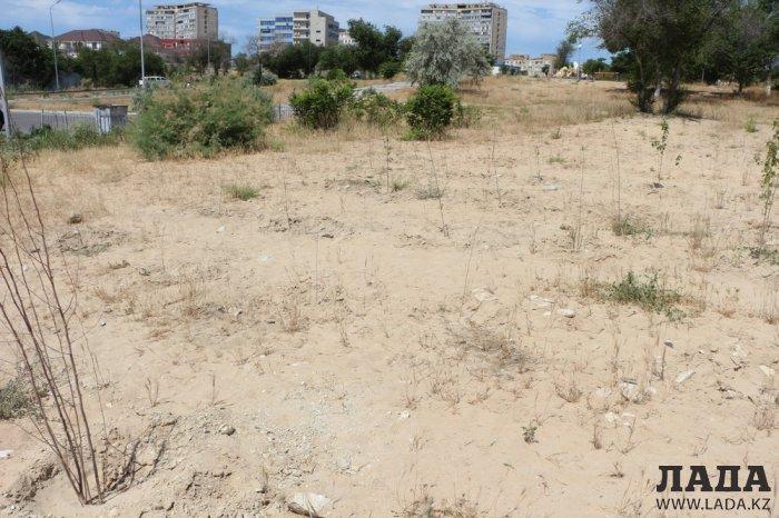 Как происходит полив в парке «Акбота» Актау. Фоторепортаж