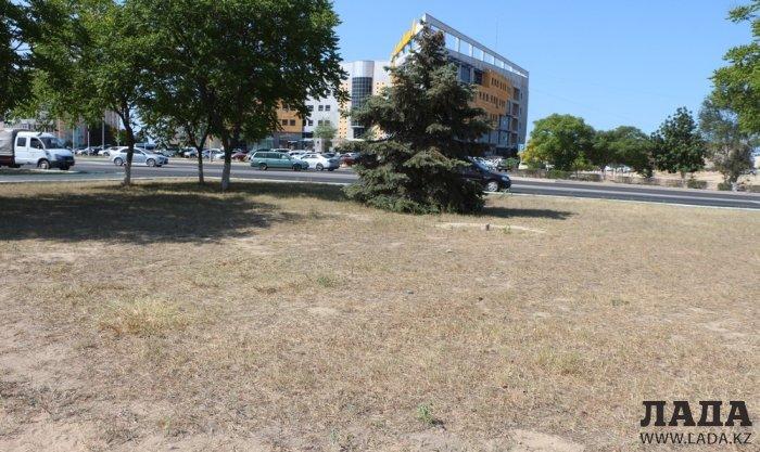 Фоторепортаж: Состояние зеленых насаждений на площади «Ынтымак» в Актау