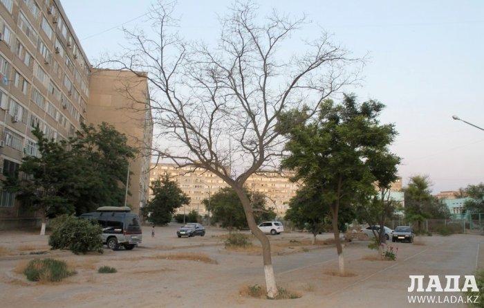 Полив по факту: Исполнение графика в Актау 19 июня