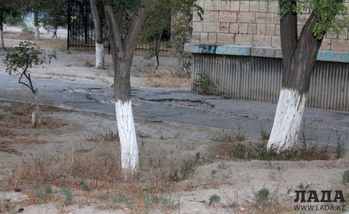 Полив по факту: Исполнение графика в Актау 26 июня