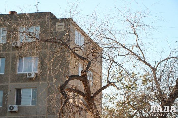 Полив по факту: Исполнение графика в Актау 28 июня