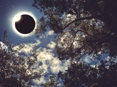 Солнечное затмение: что нельзя делать и как оно повлияет на знаки Зодиака