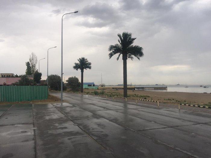 Акимат Актау: На набережной в 1 микрорайоне установили всего пять искусственных пальм
