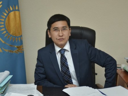 Глава МОН ответил на обращение омбудсмена по поводу возраста первоклашек в РК