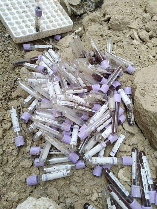 Жители Актау обнаружили свалку лабораторных пробирок с кровью