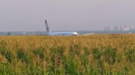 Пассажирский самолет сел в поле: в двигатель попали птицы