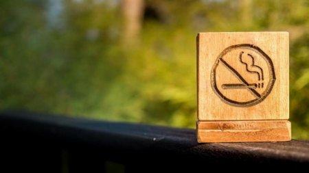 Запрет на курение в поездах незаконен