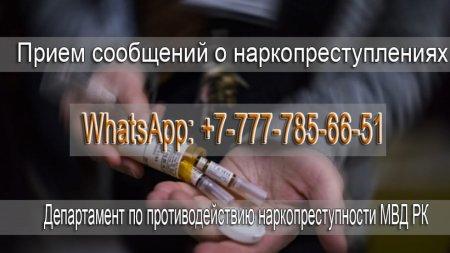 МВД РК завело WhatsApp для сообщений о рекламе и закладчиках наркотиков