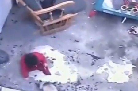 Верный кот спас ребенка от падения с лестницы