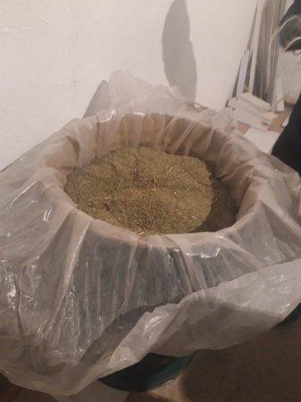 Бочку с марихуаной обнаружили полицейские Актау