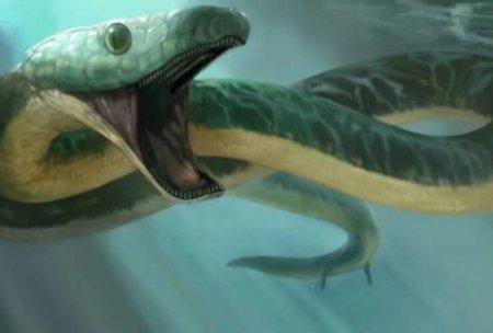 Найден череп древней змеи, способной ходить