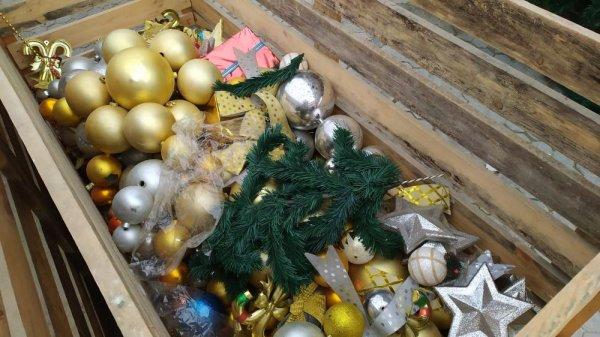 В Актау начали устанавливать новогодние ёлки