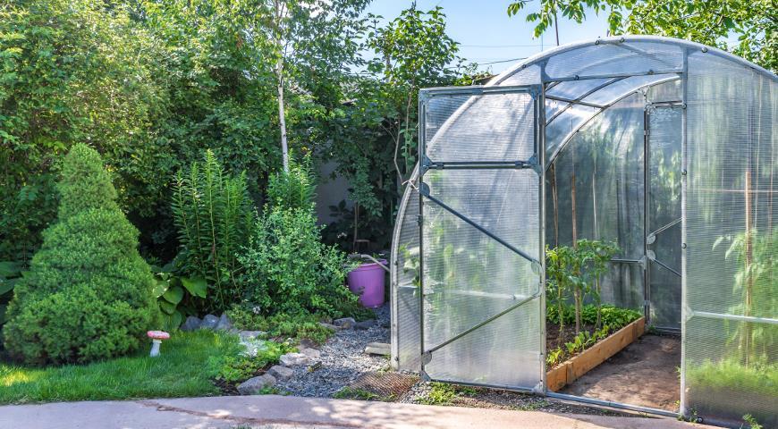 Советы при работах в теплице и на садовом участке