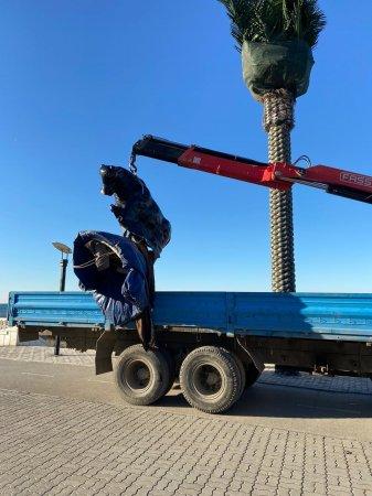 «Дуракам закон не писан» - Жители Актау пожаловались на прокатчиков на набережной