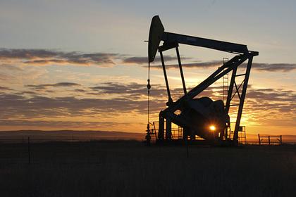 Цена на нефть упала ниже 25 долларов