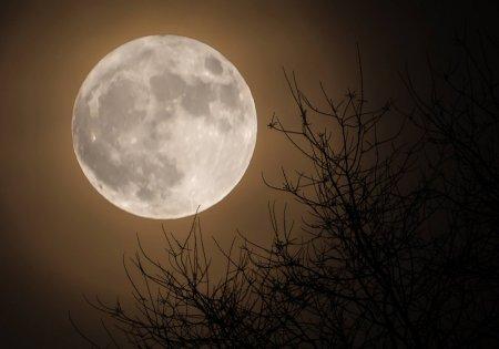 Казахстанцы увидят самое большое суперлуние года в ночь на 10 марта