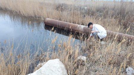 Департамент экологии Мангистау: Требуется установить хозяина земли в районе «Солдатского пляжа»