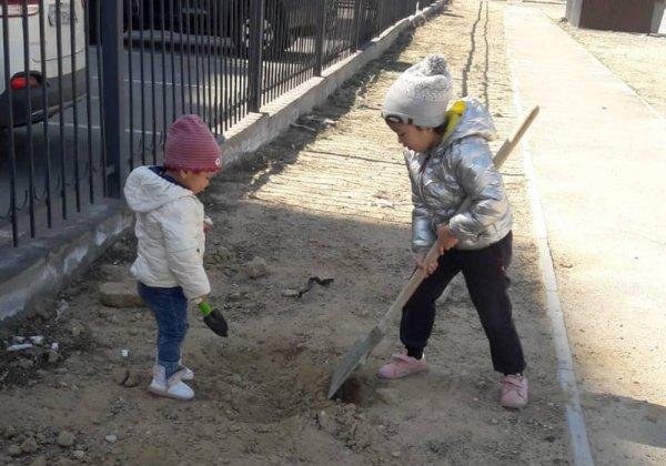 Жители жилого комплекса высадили саженцы в Актау
