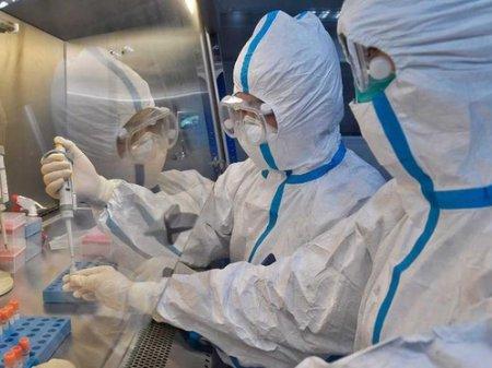 208 человек заражены коронавирусом в Казахстане