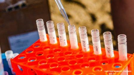 450 человек заразились COVID-19 в Казахстане за сутки