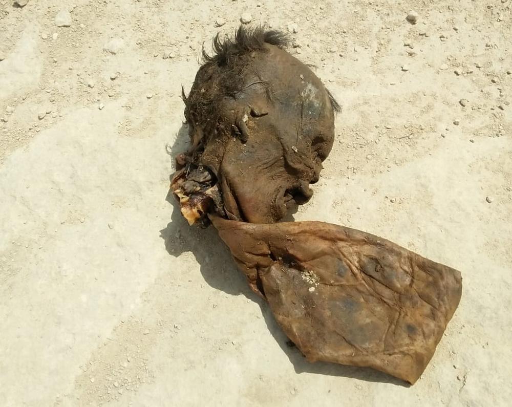 Скелетированные останки человека нашли в Мангистау