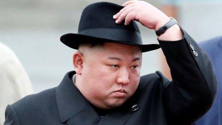 Ким Чен Ын приказал конфисковать домашних собак в Пхеньяне