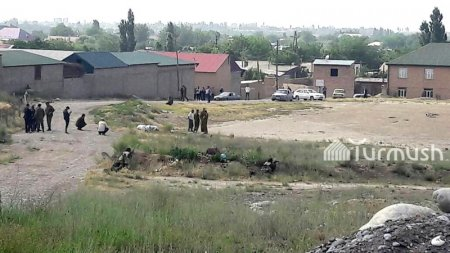 В киргизском селе местные жители привязали к дереву председателя села и участкового