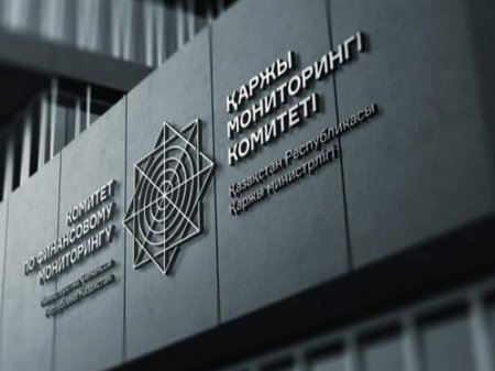 Задержание Елжана Биртанова подтвердили в Комитете по финмониторингу Минфина