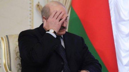 Лукашенко готов провести новые выборы