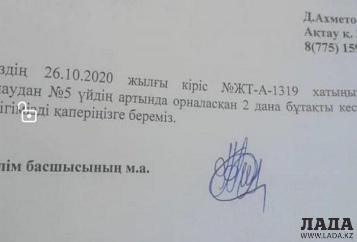 Жители Актау пожаловались на вырубку деревьев в 7 микрорайоне
