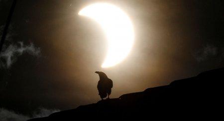 """Солнце """"отключится"""" на два с половиной часа 14 декабря"""
